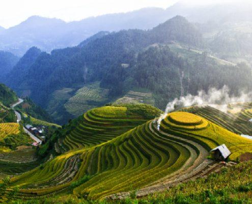 טראסות האורז בסין