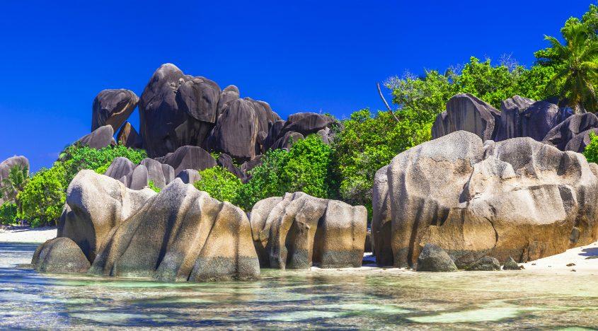 סיישל עם נוה אקדמיה - חוף פסלי הסלע