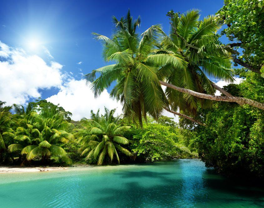 האי מאהה, סיישל עם נוה אקדמיה